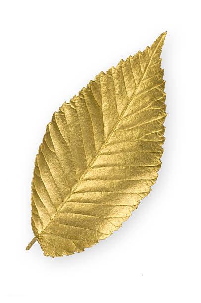 ponad 20 lat doświadczenia  w handlu i skupie złota i innych metali szlachetnych